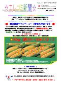 平成23年 8月発行